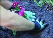 Перчатка для работы в саду удобно и практично